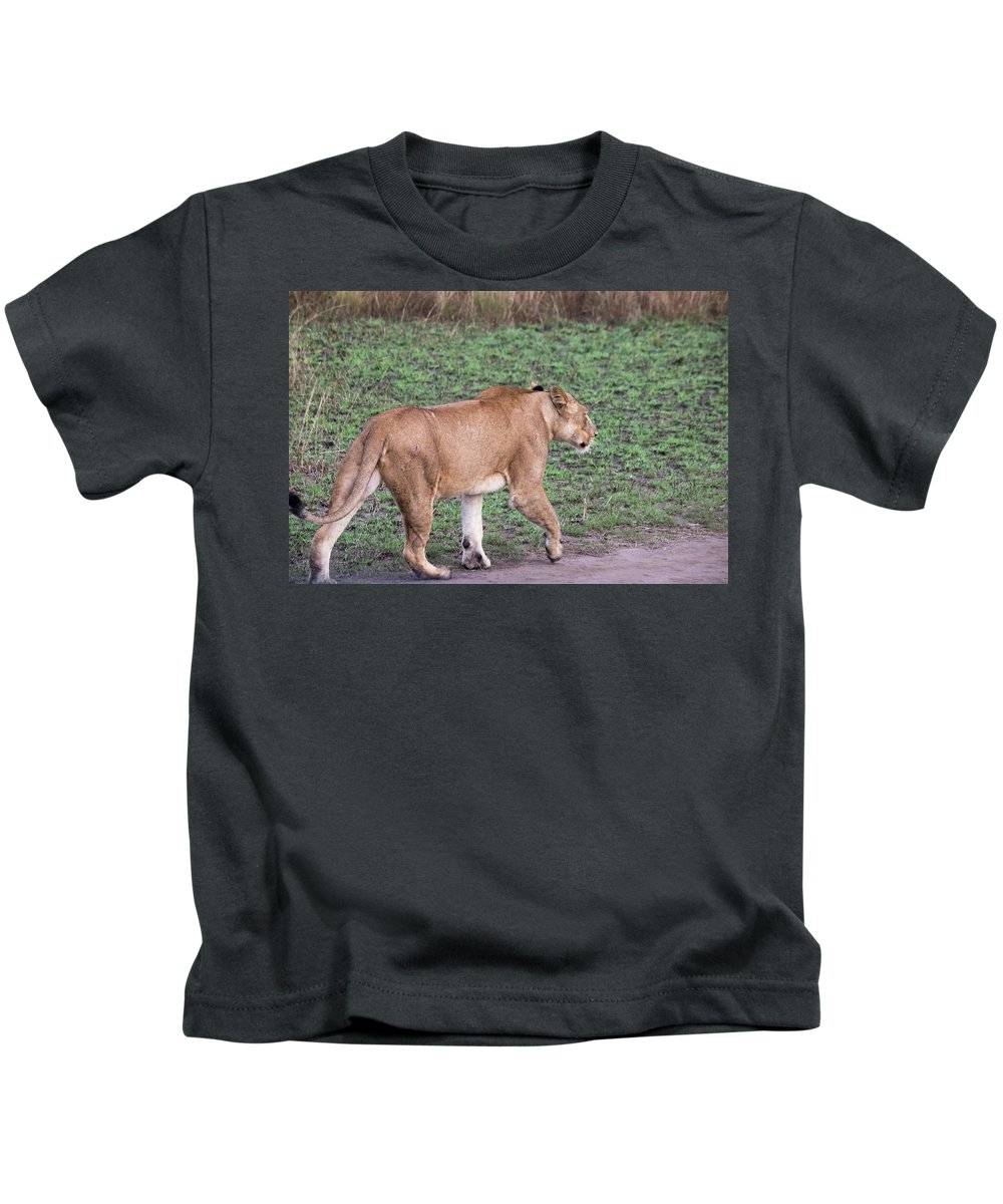 Adult Kids T-Shirt featuring the photograph Lioness On Dirt Road Queen Elizabeth National Park, Uganda by Karen Foley