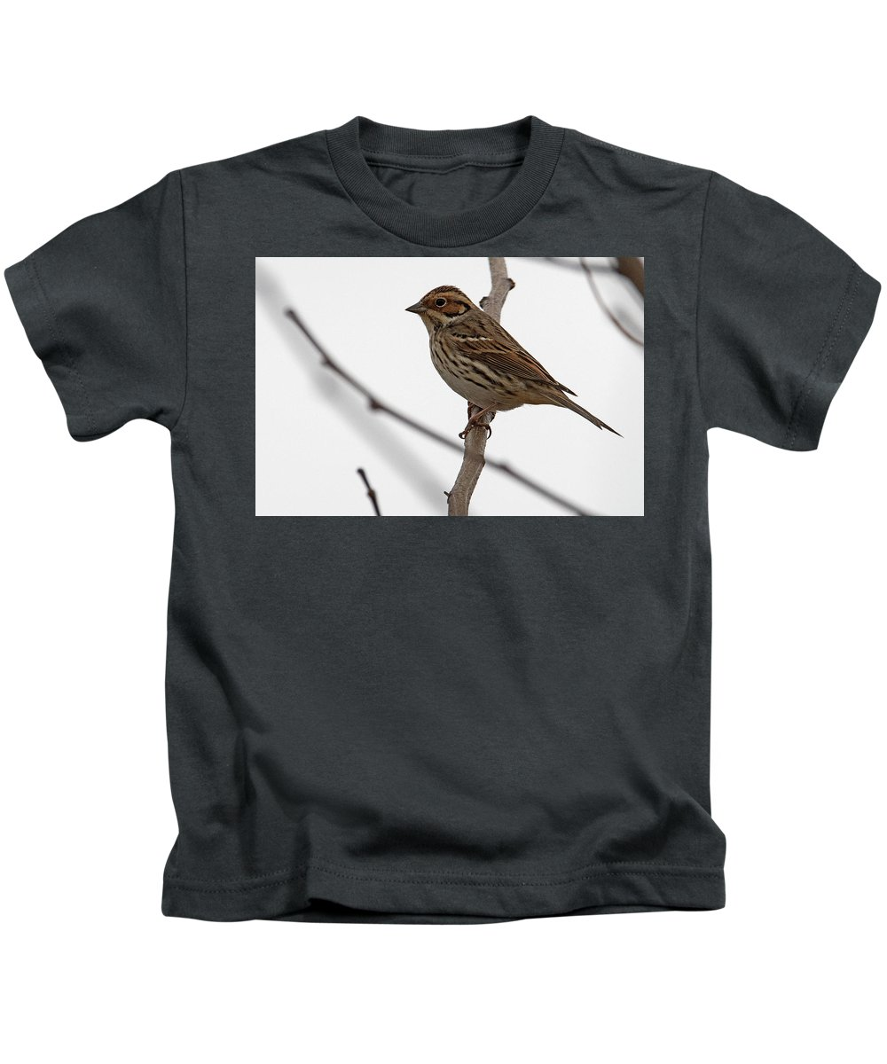 Buntings Kids T-Shirt featuring the photograph Little Bunting by Eric Nelson