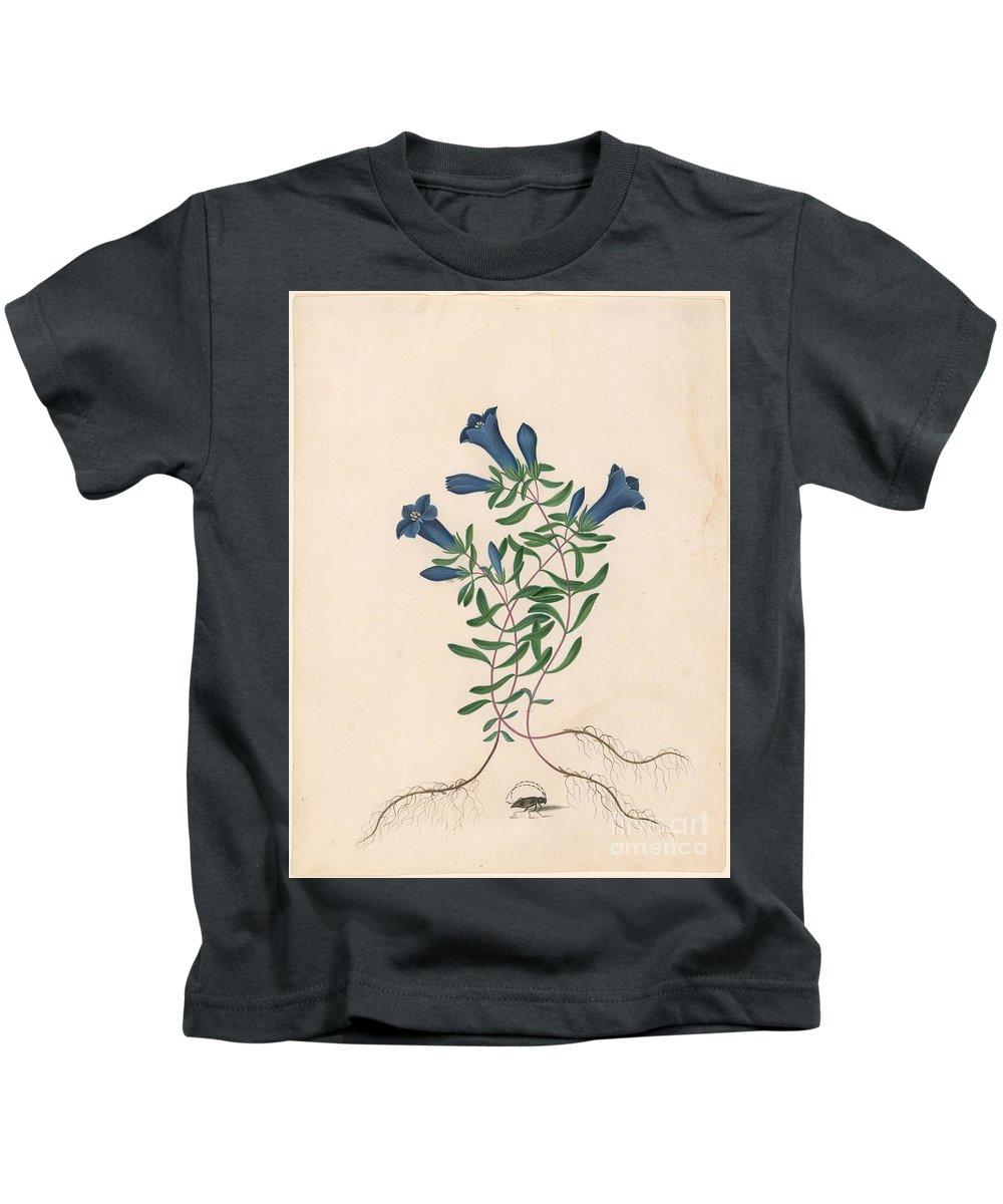 James Bolton Kids T-Shirt featuring the painting Liverpool Gentian With One Insect by MotionAge Designs