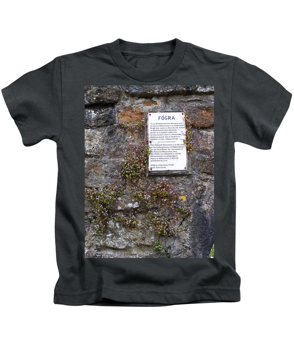 Irish Kids T-Shirt featuring the photograph Living Wall At Donegal Castle Ireland by Teresa Mucha