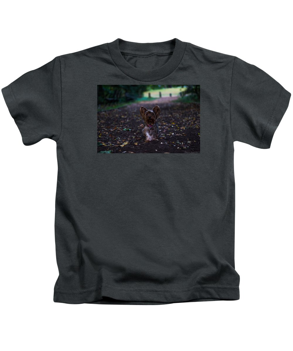 Kids T-Shirt featuring the photograph Lost Puppy by Saul Tavarez