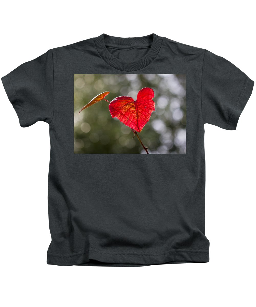 Clare Bambers Kids T-Shirt featuring the photograph Love Heart by Clare Bambers