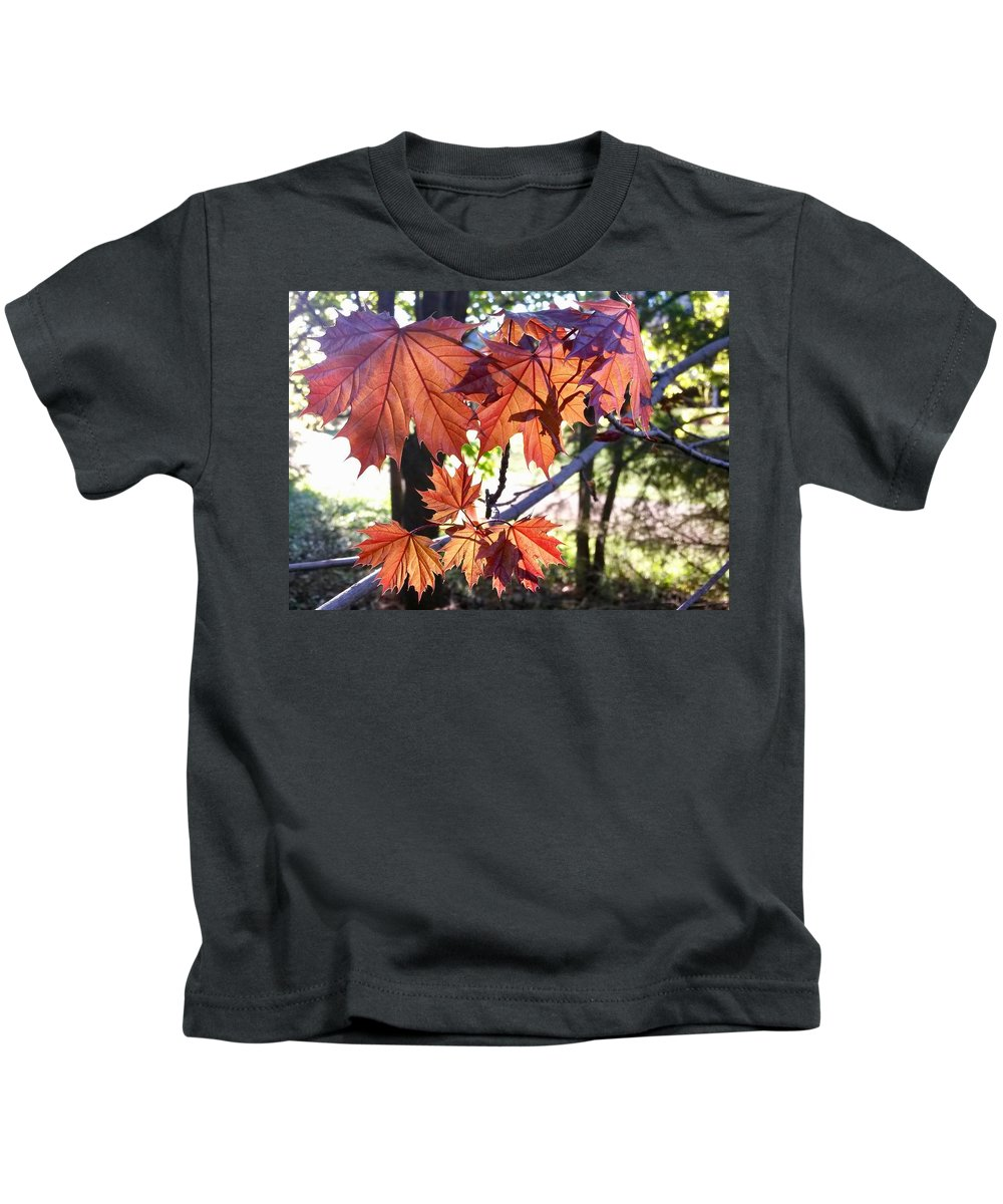 Maple Tree Kids T-Shirt featuring the photograph Maple by Aurora Bautista