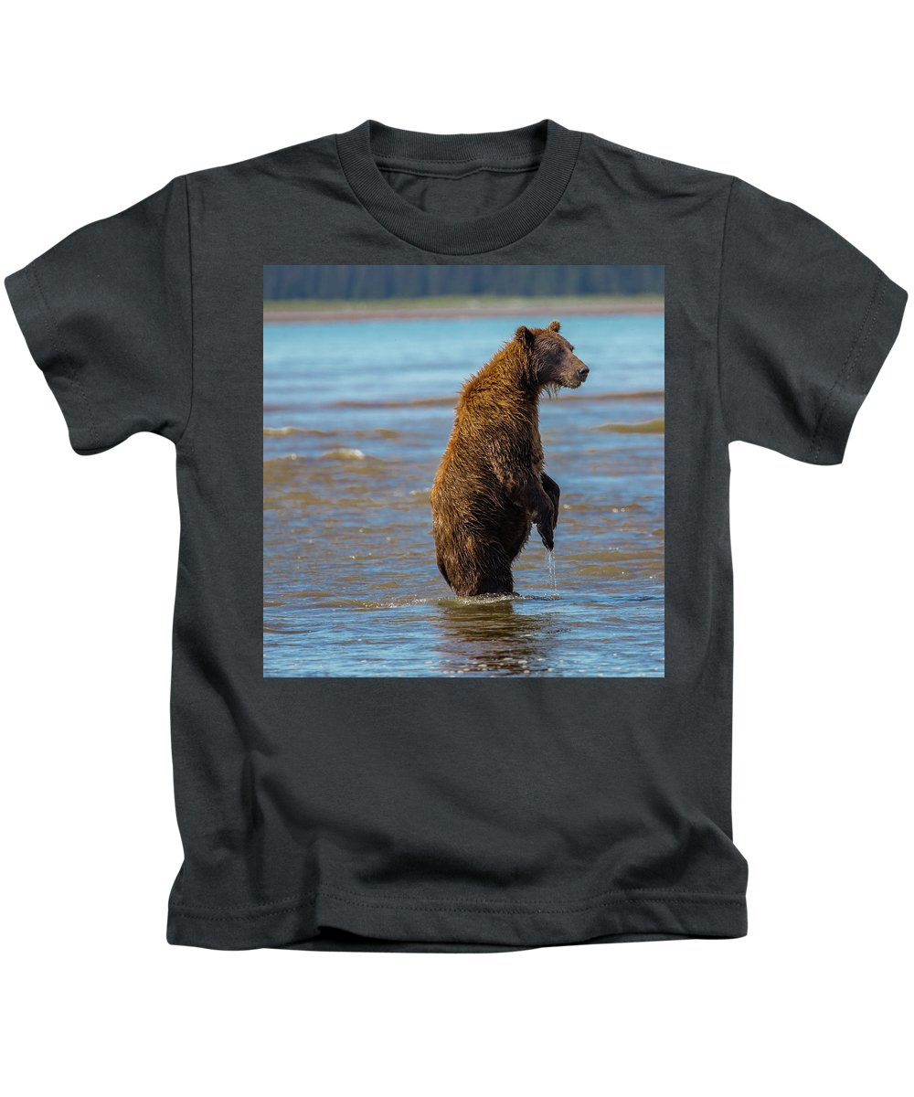 Bear Kids T-Shirt featuring the photograph Missed It by Kathy Whitehurst