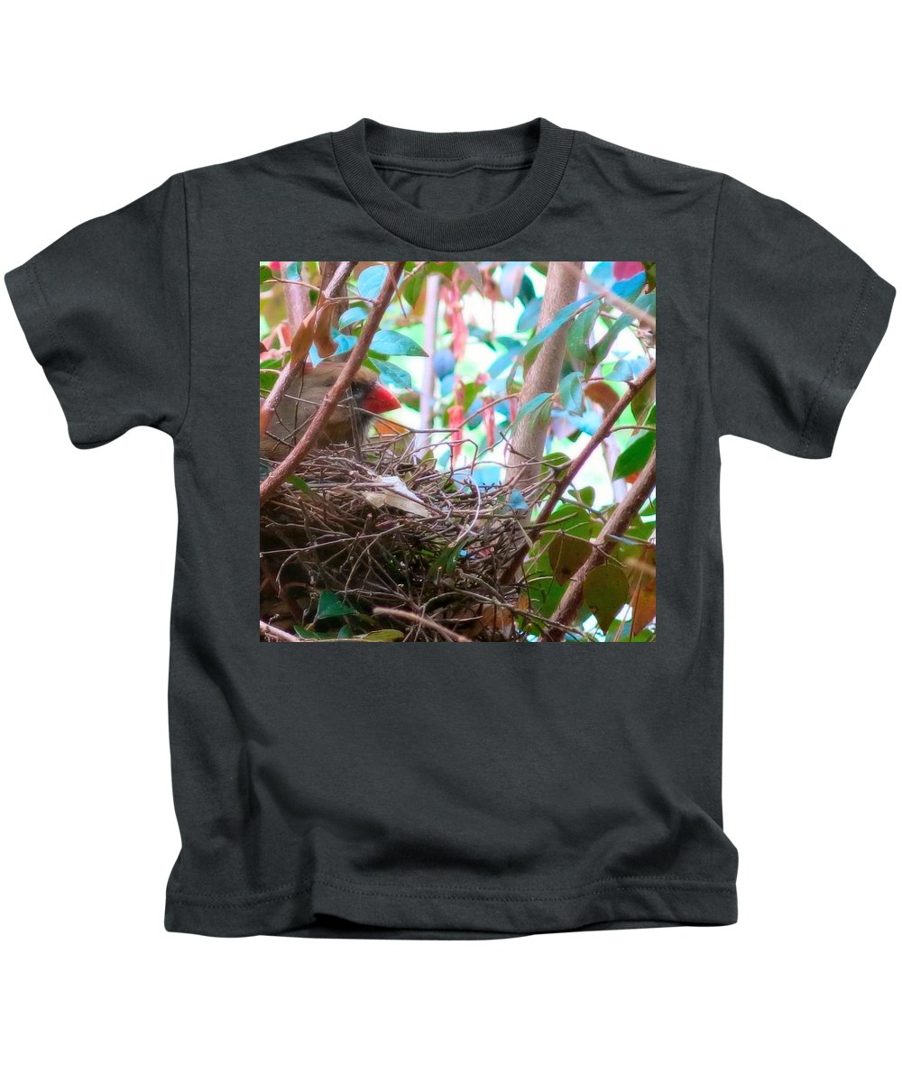Spring Kids T-Shirt featuring the photograph Momma Cardinal Nesting by Betty Buller Whitehead
