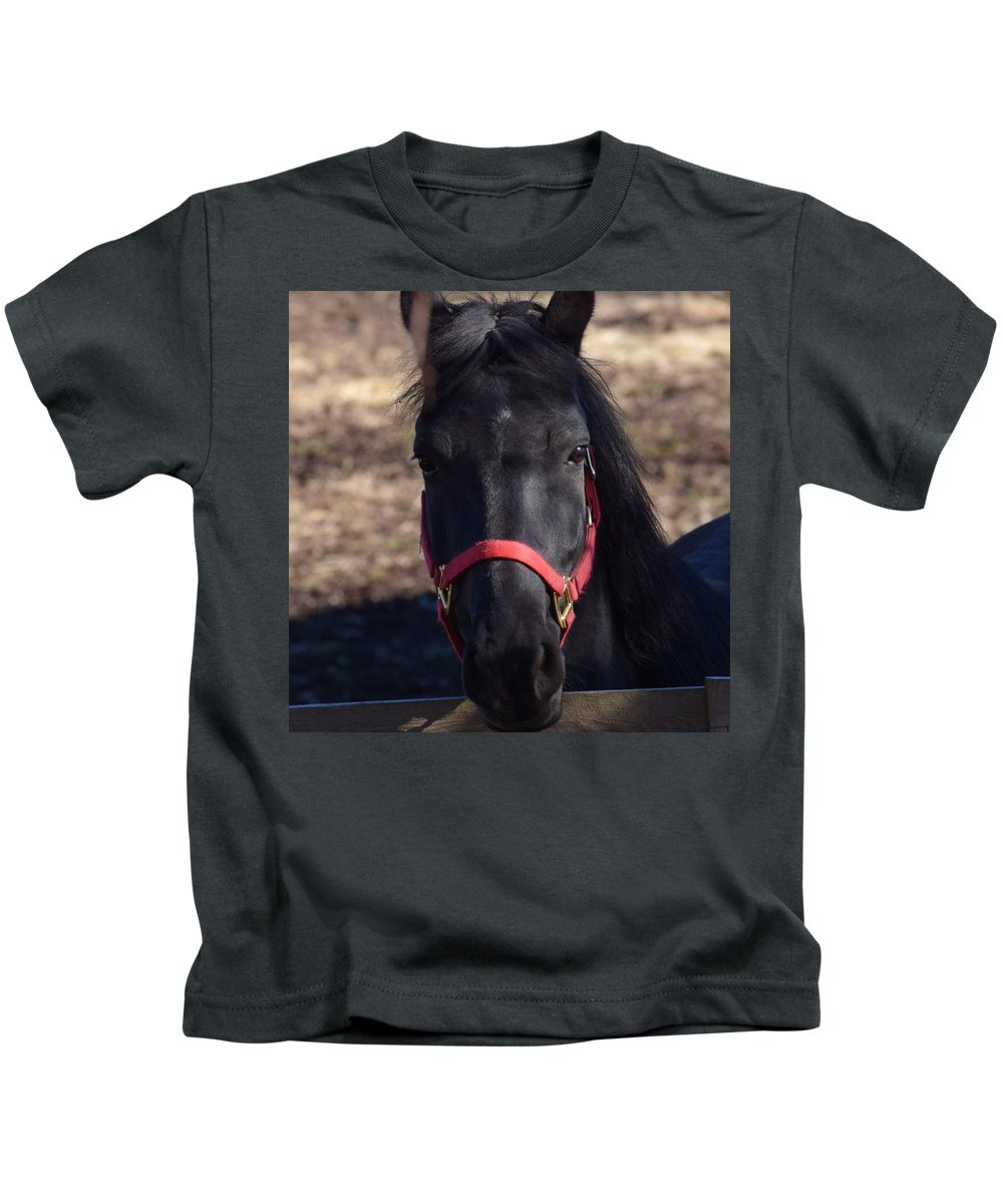 Photo Of Mustang Mare Kids T-Shirt featuring the photograph Moon Shadow by Francine Spagnuolo