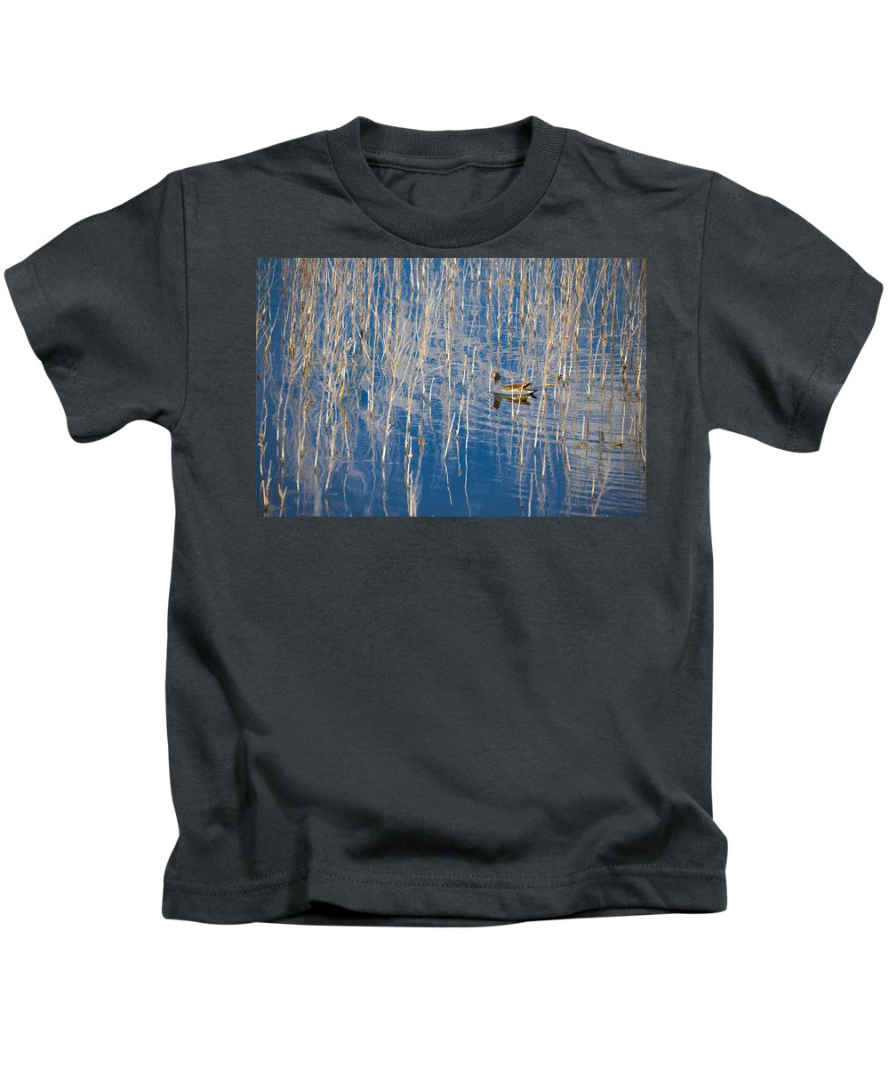 Moorhen Kids T-Shirt featuring the photograph Moorhen In The Reeds by Carolyn Marshall