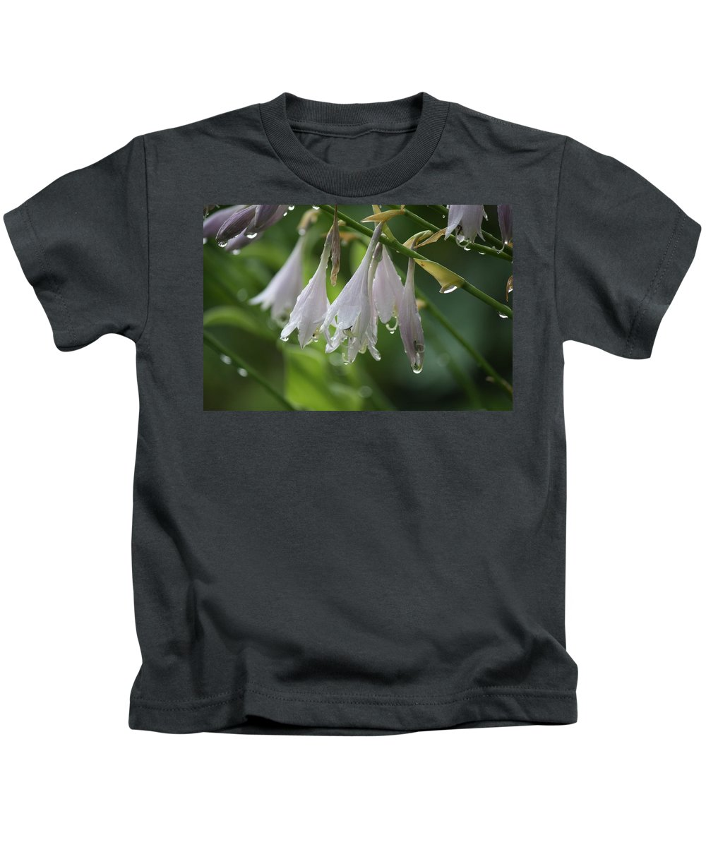 Dew Kids T-Shirt featuring the photograph Morning Dew by Brian C Kane