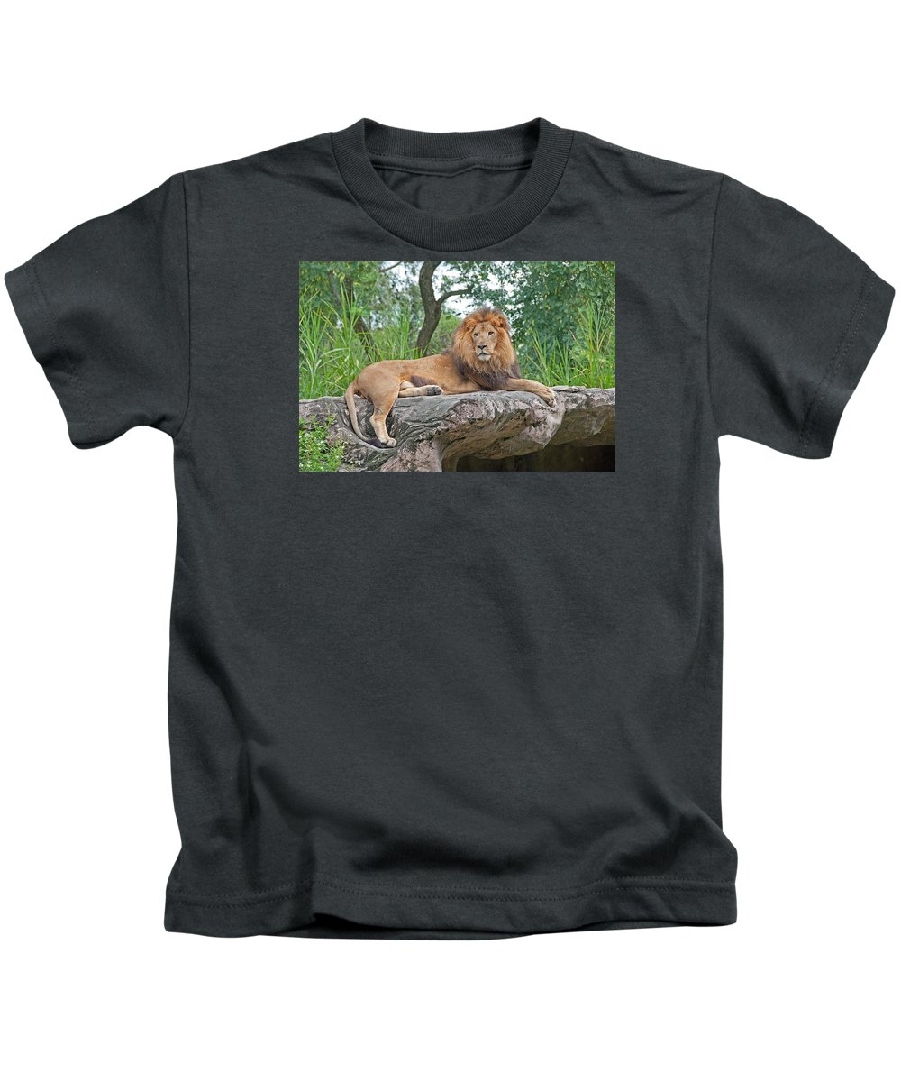 Lion Kids T-Shirt featuring the photograph Mr Majestic by John Black