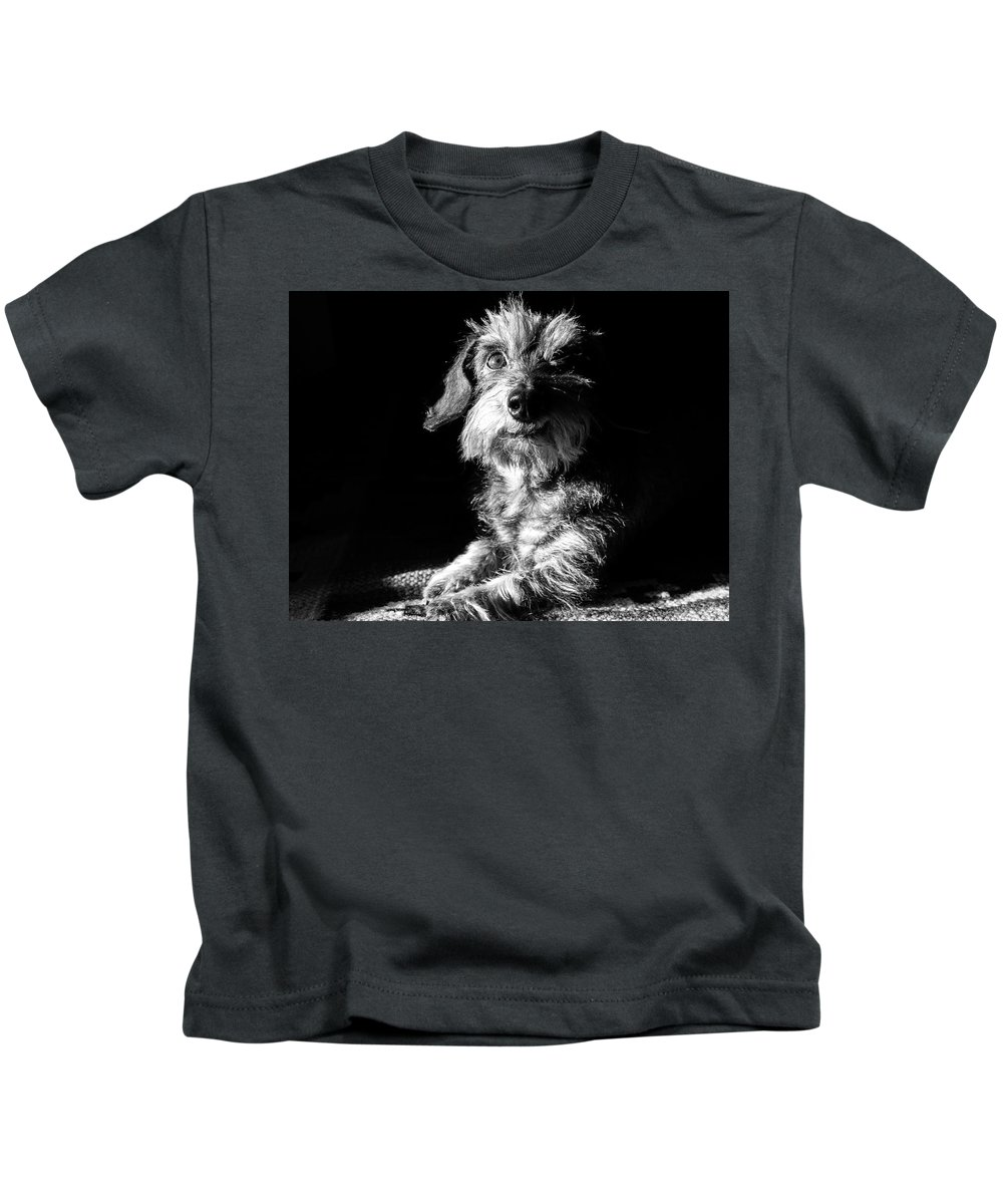 Dog Kids T-Shirt featuring the photograph My Dog by Michele Mule'