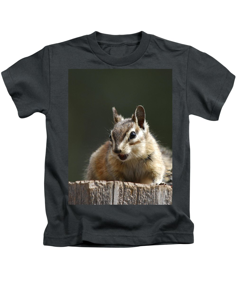 Squirrel Kids T-Shirt featuring the photograph My Name Is Alvin by Donna Blackhall