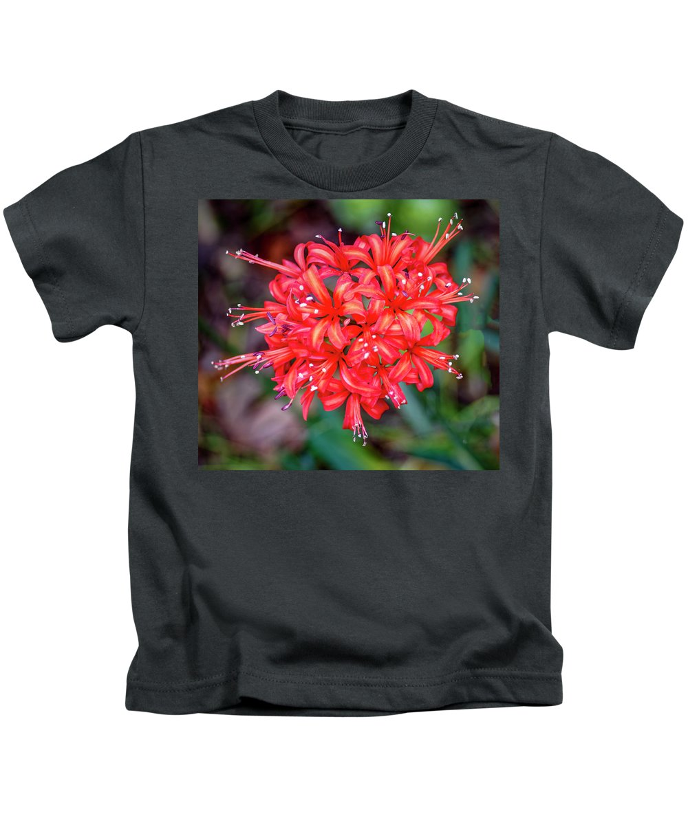 Flower Kids T-Shirt featuring the photograph Nerine Sarniensis - Guernsey Lily by Tony Crehan