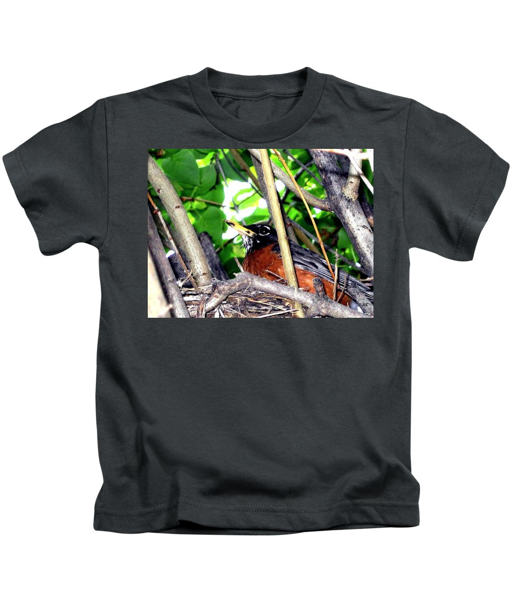 Robin Kids T-Shirt featuring the photograph Nesting Robin by Will Borden