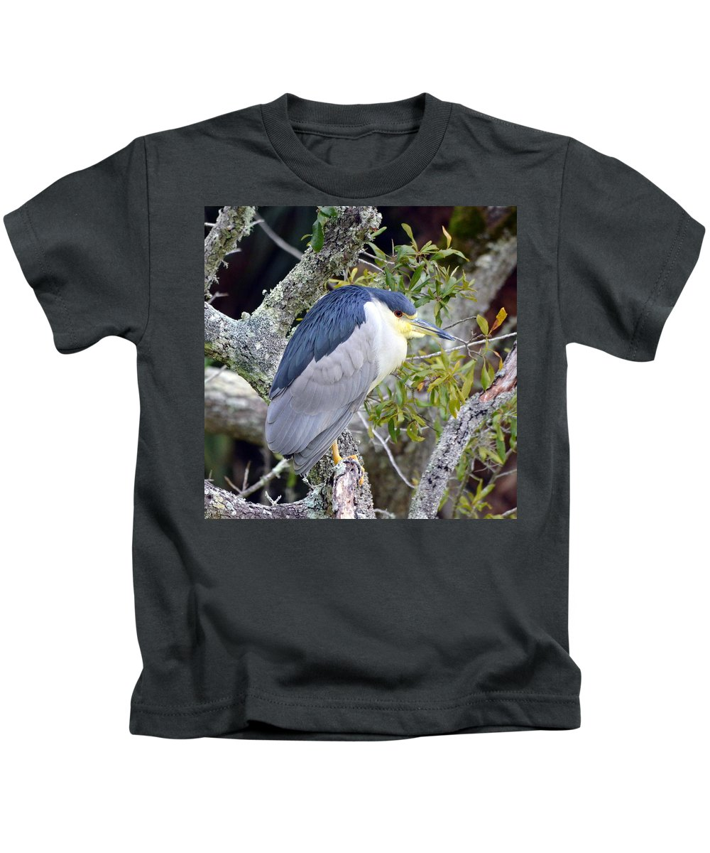 Black-crowned Night Heron Kids T-Shirt featuring the photograph Night Heron by Carla Parris