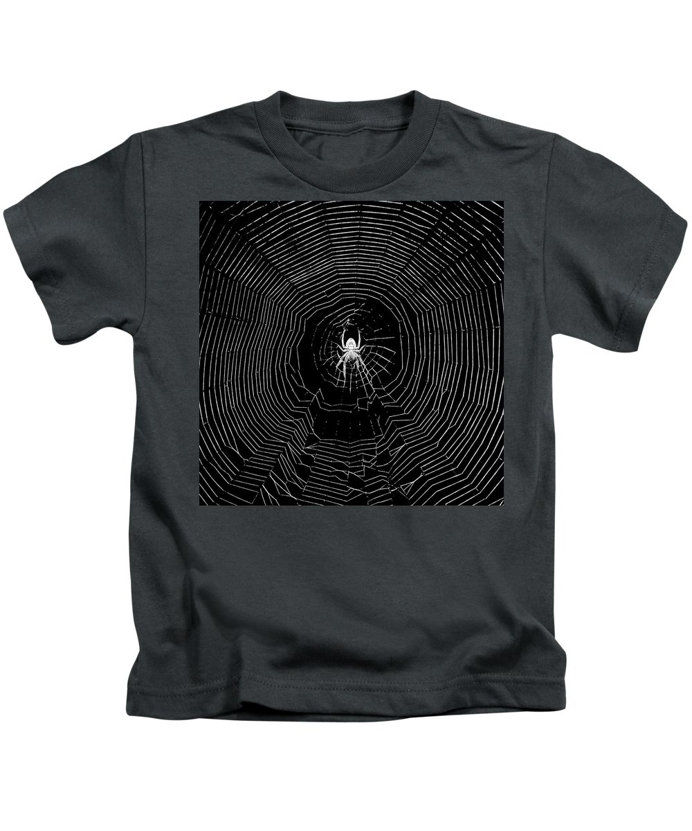 Insect Kids T-Shirt featuring the photograph Nighttime Spider And Web by Lindy Pollard