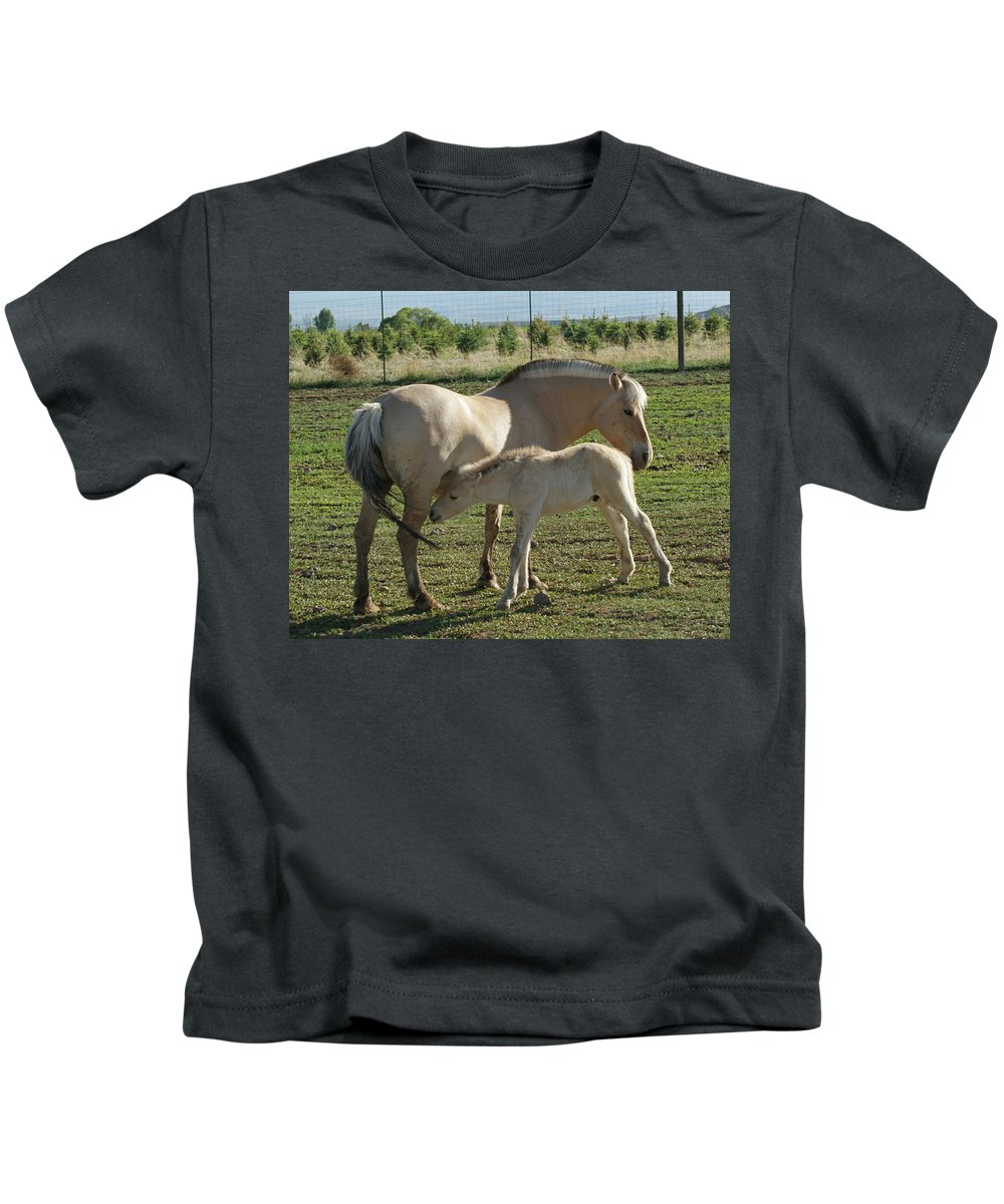 Norwegian Fjord Horse Kids T-Shirt featuring the photograph Norwegian Fjord Horse And Colt by Ernie Echols
