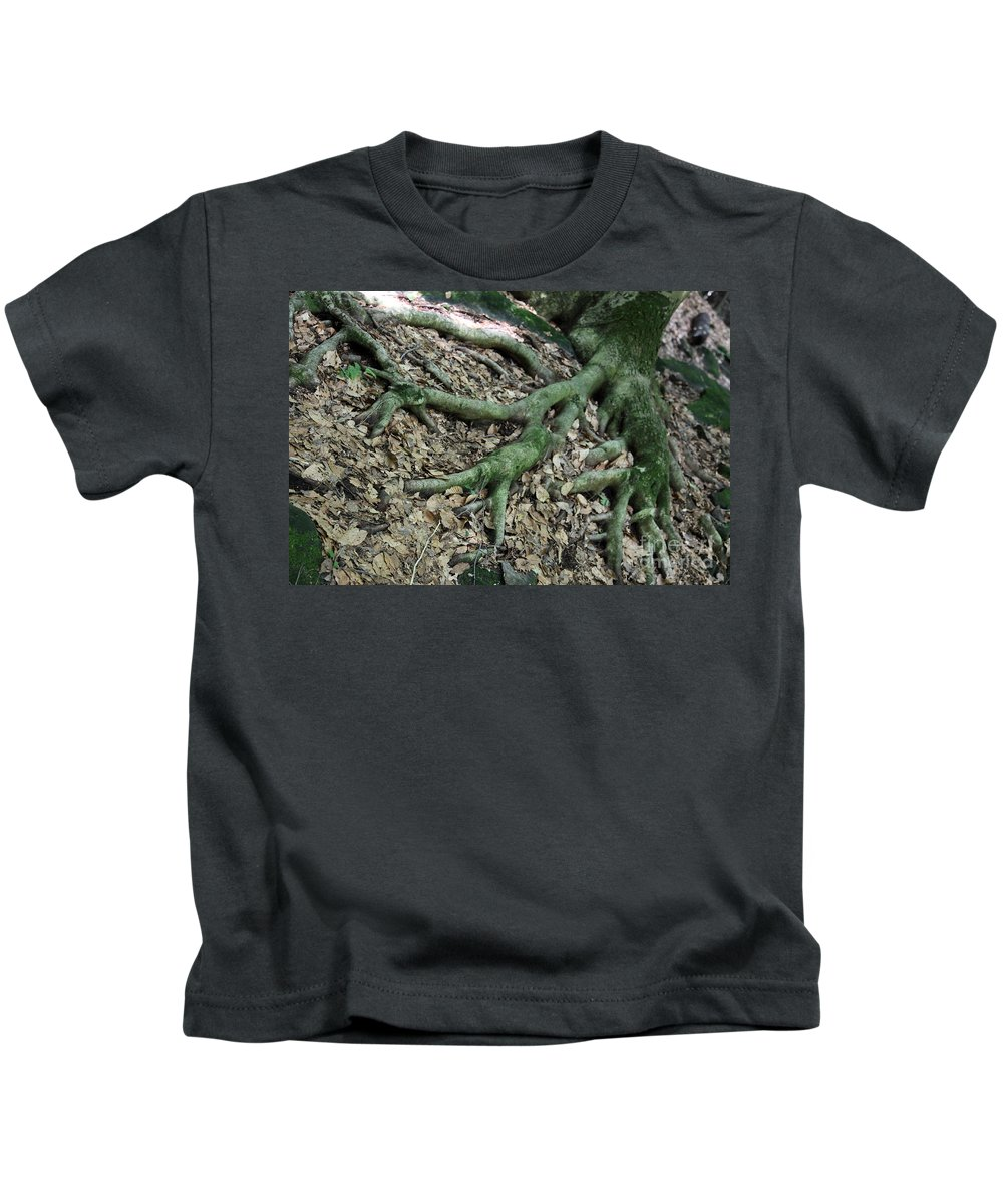 Trees Kids T-Shirt featuring the photograph Nourishment by Amanda Barcon