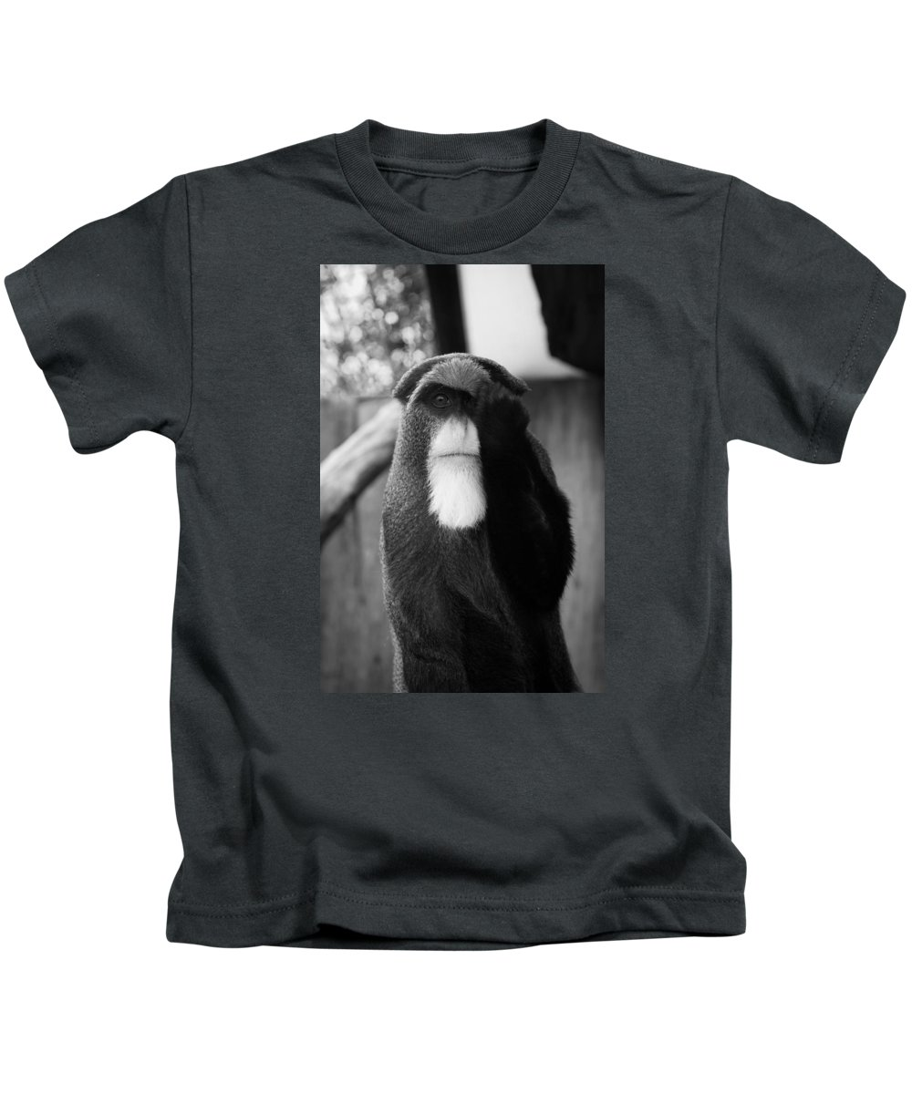 Animals Kids T-Shirt featuring the photograph Now You See Me by Lina Christa