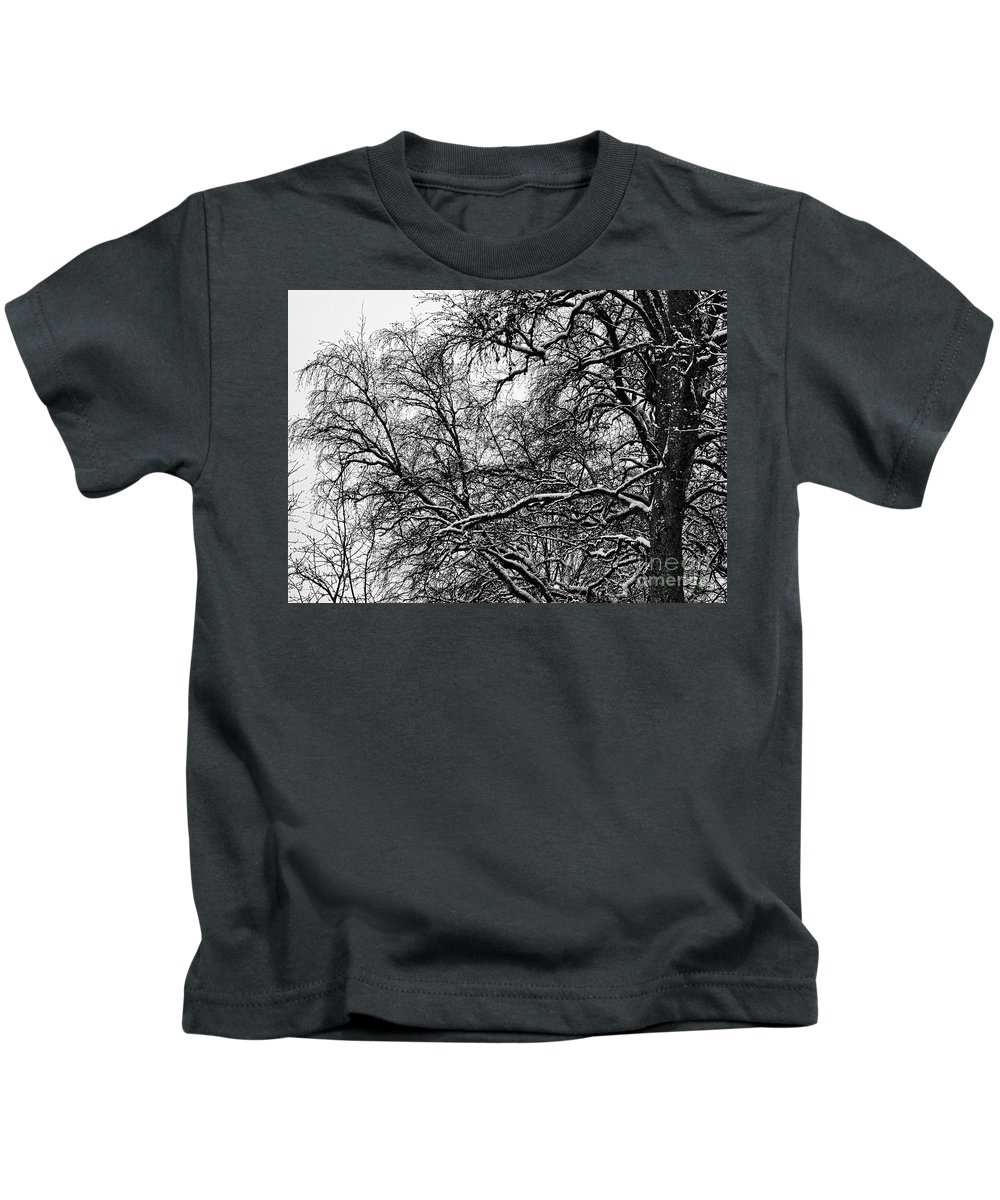 Birch Kids T-Shirt featuring the photograph Old Tree 6 by Esko Lindell