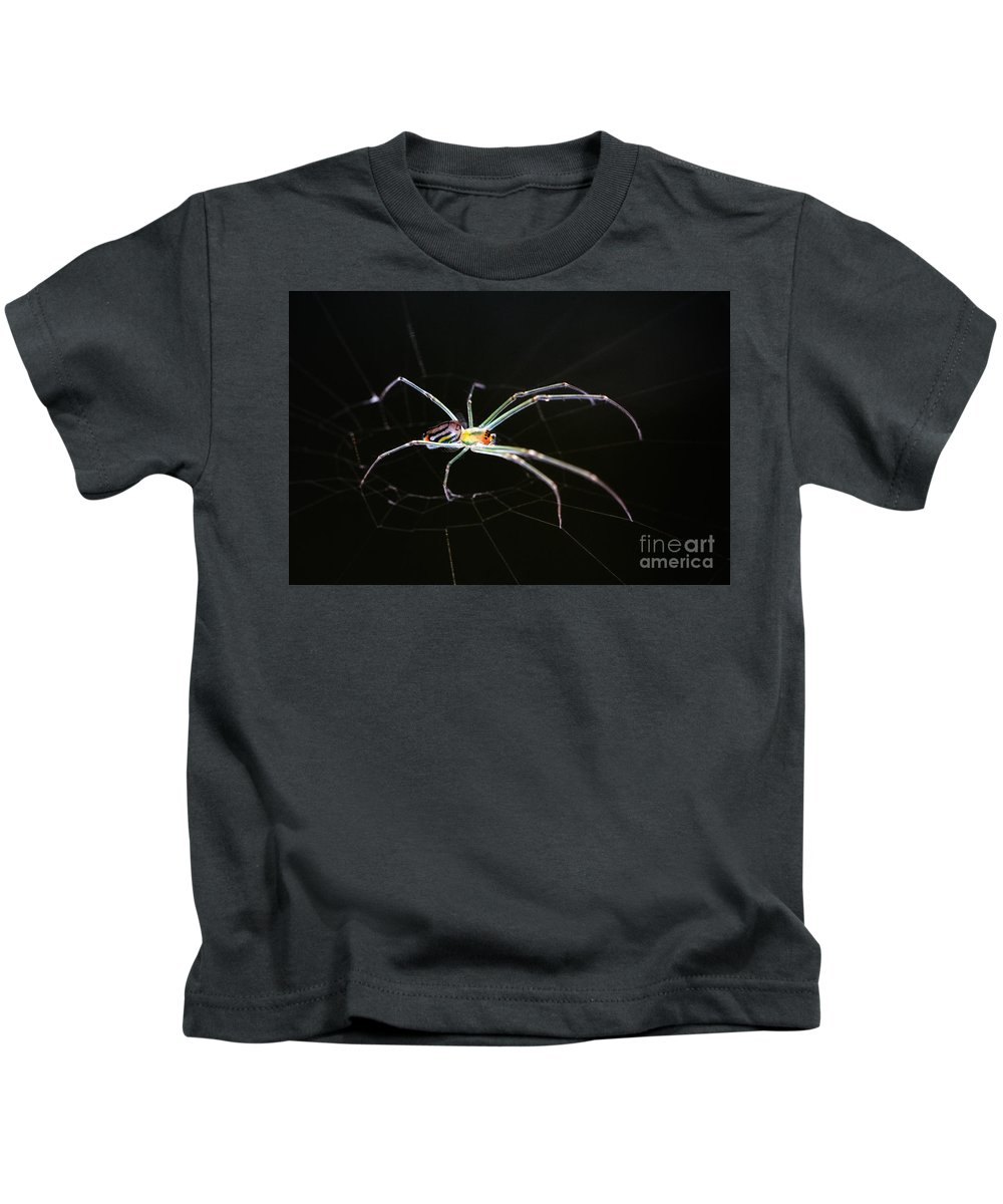 Orchard Orbweaver Spider Kids T-Shirt featuring the photograph Orchard Orbweaver Spider by Matt Suess