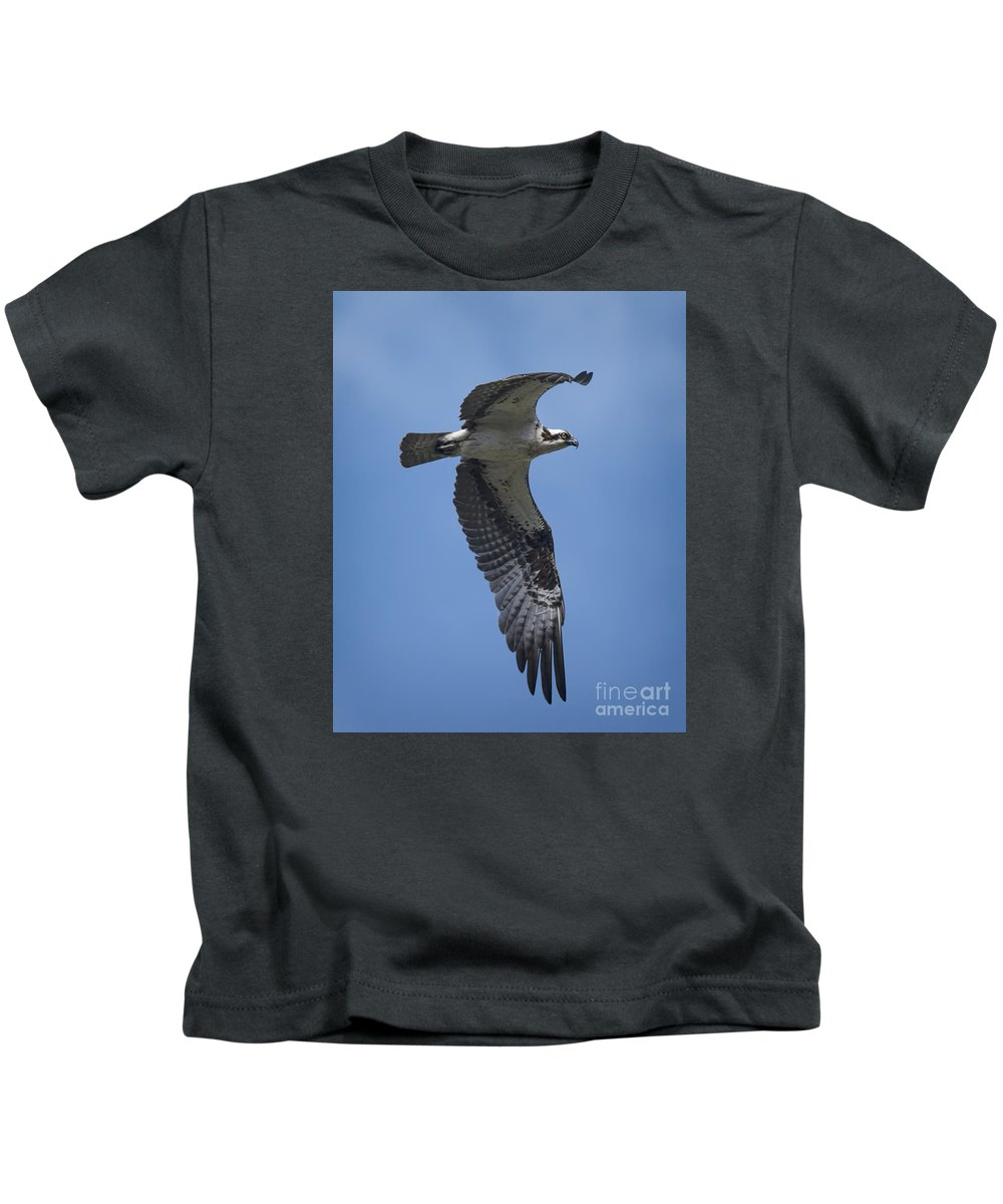 Osprey In Flight Kids T-Shirt featuring the photograph Osprey In Flight by Priscilla Burgers