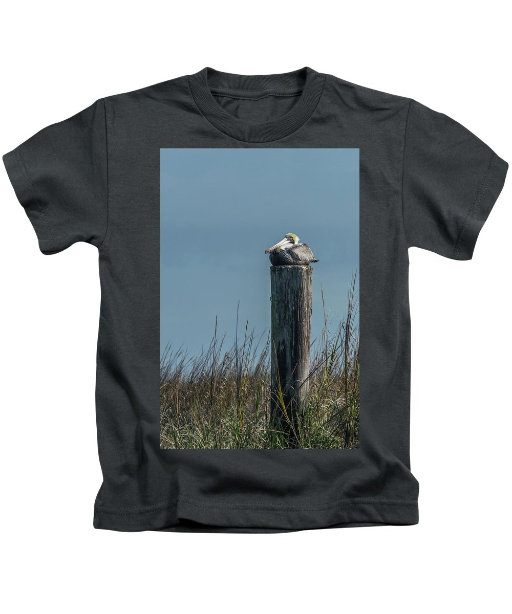 Animal Kids T-Shirt featuring the photograph Pelican On A Piling by Nancy Comley