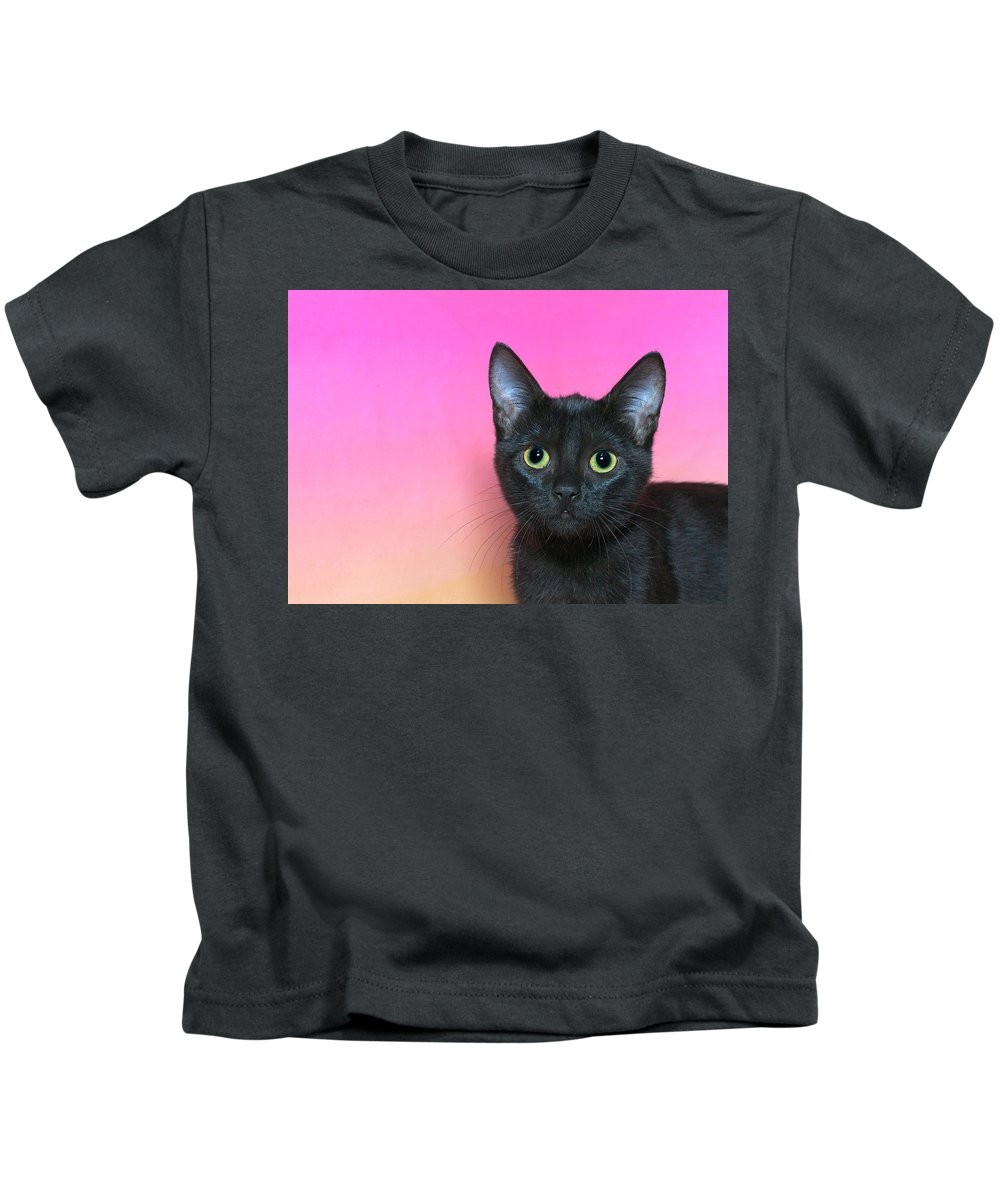 Adorable Kids T-Shirt featuring the photograph Portrait Of A Black Kitten by Sheila Fitzgerald