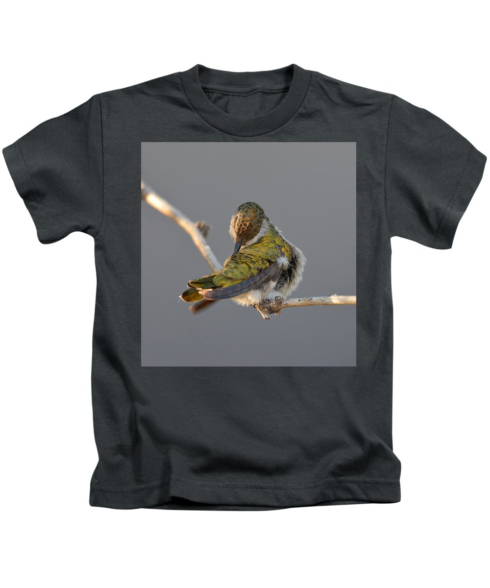Hummingbird Kids T-Shirt featuring the photograph Preening Costa's Female by Michael Searcy