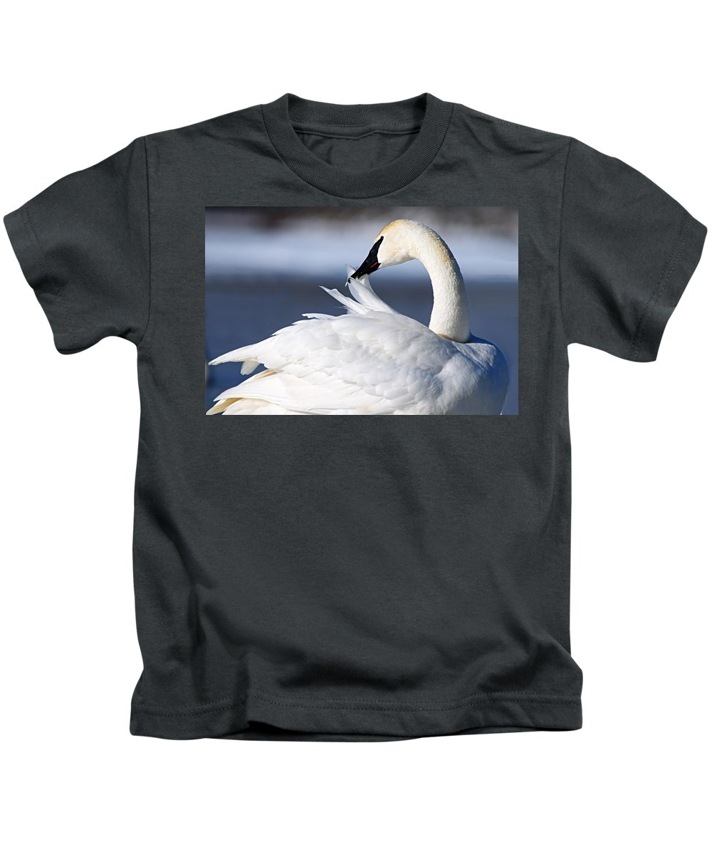 Trumpeter Swan Kids T-Shirt featuring the photograph Preening by Larry Ricker