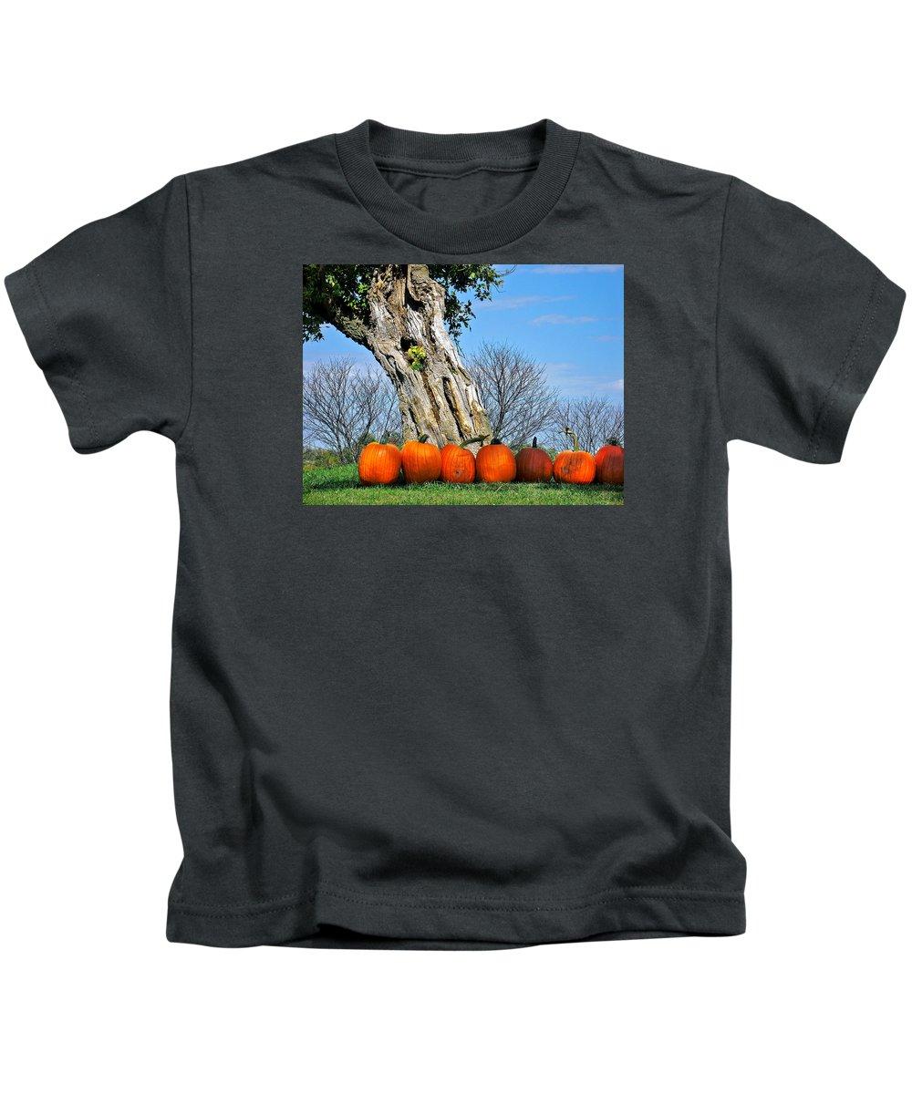 Landscape Kids T-Shirt featuring the photograph Pumpkins In A Row by Steve Karol