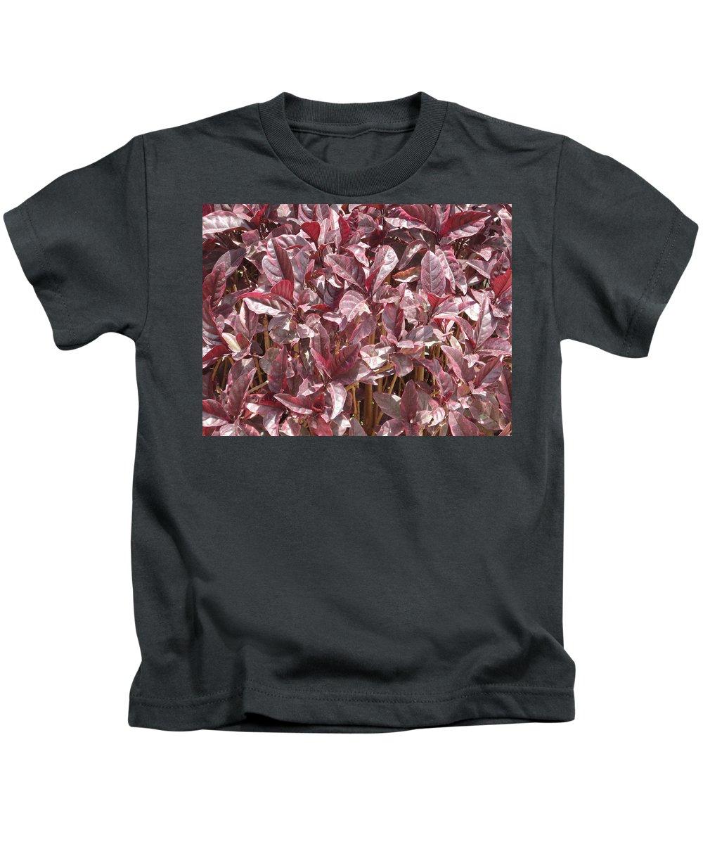 Purple Kids T-Shirt featuring the photograph Purple Foliage by Usha Shantharam