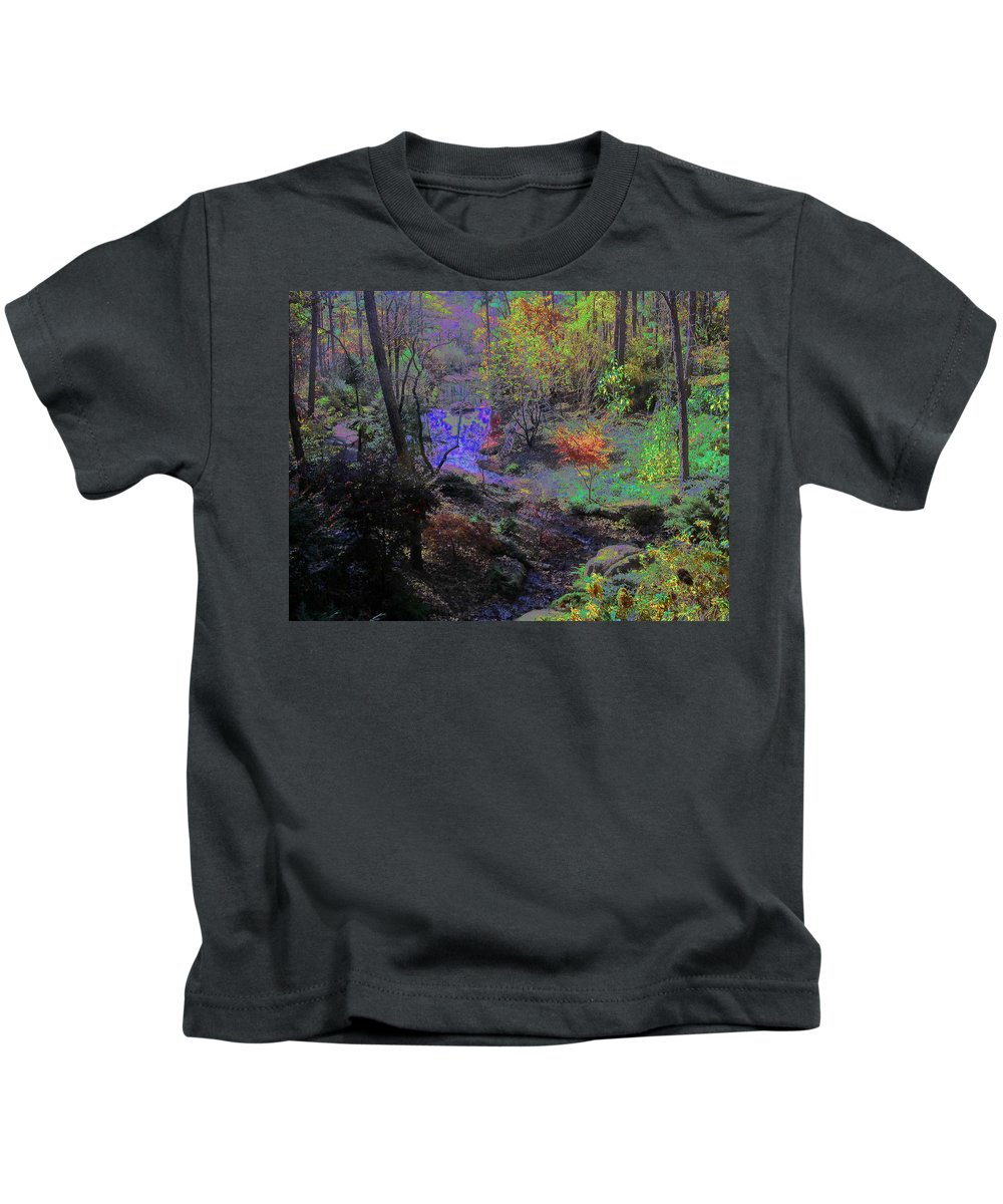 Woods Kids T-Shirt featuring the photograph Rainbow Fairies Sweep Across The Landscape by Anne Cameron Cutri