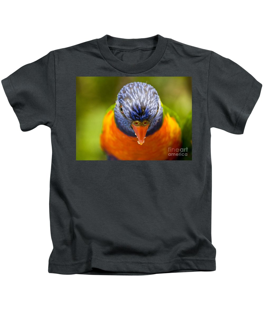 Rainbow Lorikeet Kids T-Shirt featuring the photograph Rainbow lorikeet by Sheila Smart Fine Art Photography
