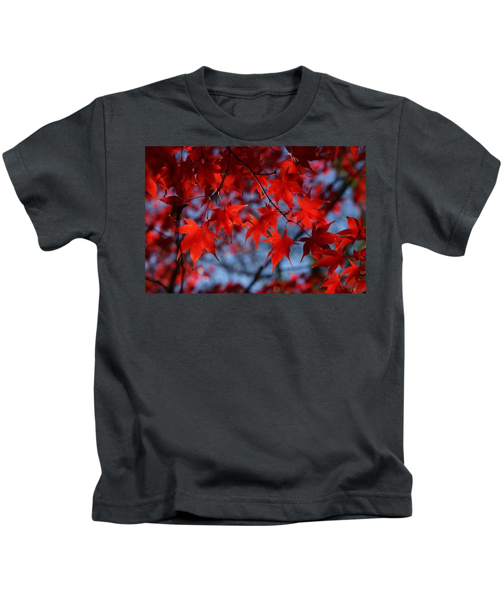 Red Kids T-Shirt featuring the photograph Red On Blue by Carrie Goeringer