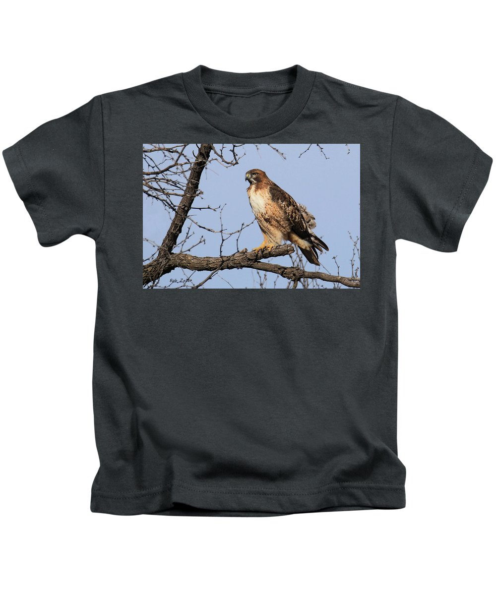 Red-tailed Hawk Kids T-Shirt featuring the photograph Red-tailed Hawk by Bob Zeller