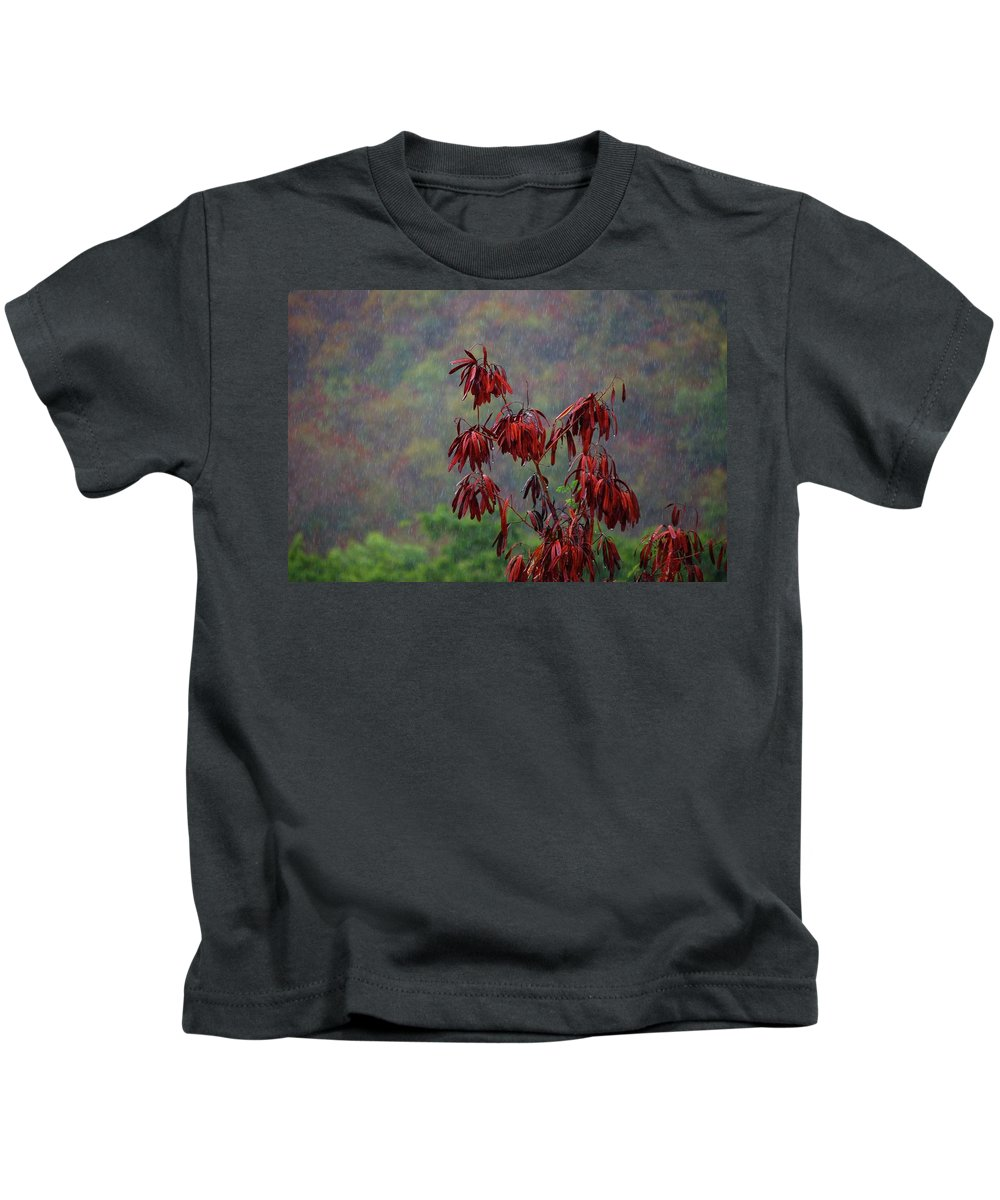 Alabama Photographer Kids T-Shirt featuring the digital art Red Tree In The Rain by Michael Thomas