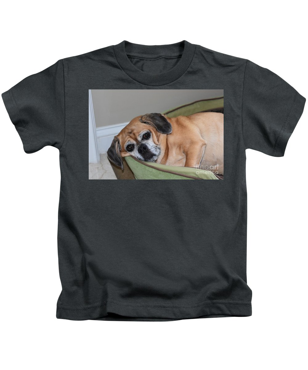 Dogs Kids T-Shirt featuring the photograph Resting Pooch by Lisa Kleiner