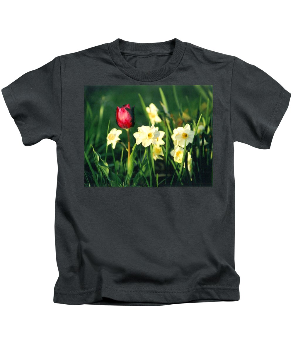 Tulips Kids T-Shirt featuring the photograph Royal Spring by Steve Karol