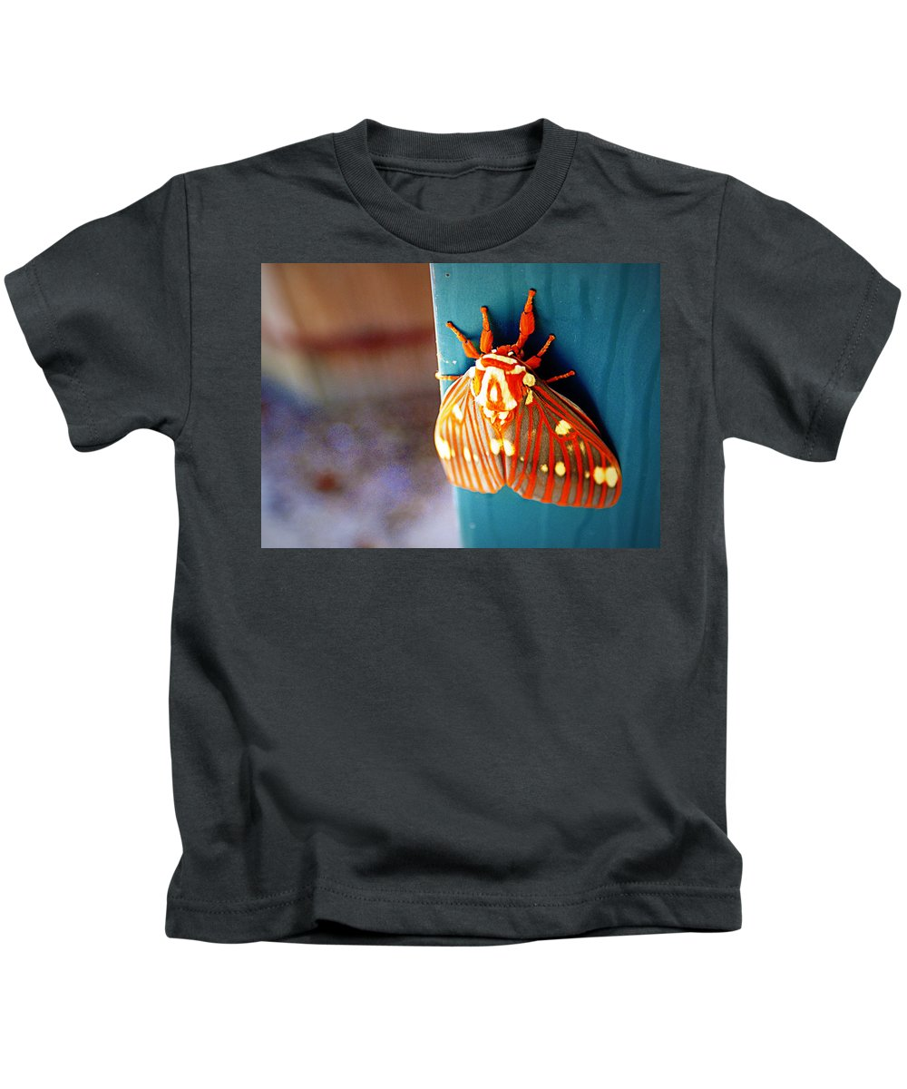 royal Walnut Moth Royal Kids T-Shirt featuring the photograph Royal Walnut Moth by Cricket Hackmann