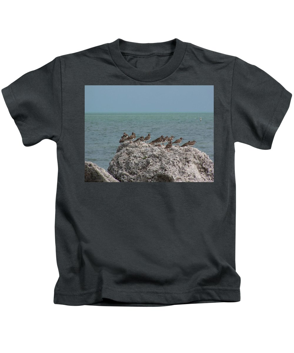 Ruddy Turnstones Kids T-Shirt featuring the photograph Ruddy Turnstones On A Rock by Holly Eads