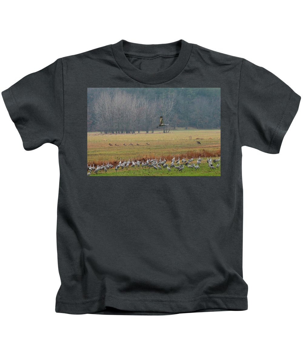 Birds Kids T-Shirt featuring the photograph Sand Hill Crane Migration by David Arment