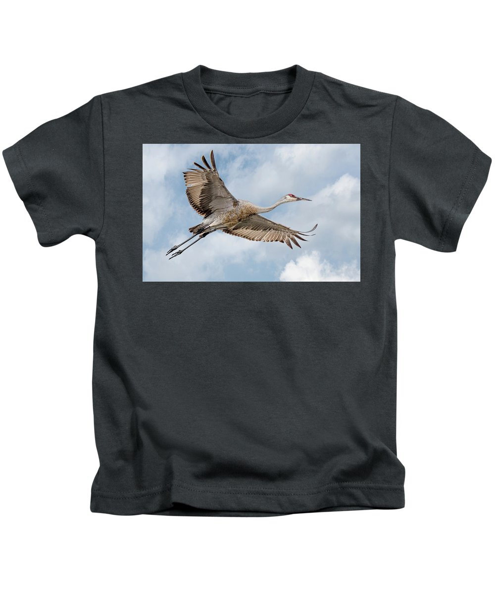 Sandhill Crane Kids T-Shirt featuring the photograph Sandhill Crane In Flight by Wes Iversen