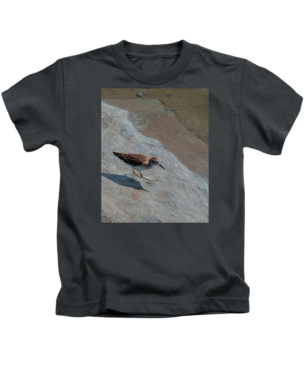 Kids T-Shirt featuring the photograph Sandpiper 04 by Robert Hayes