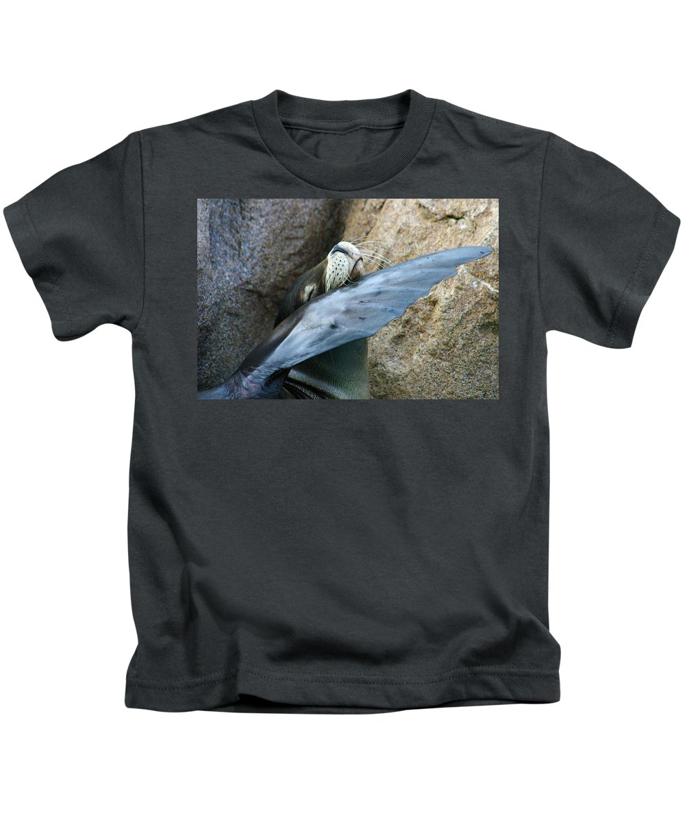 Sea Lion Kids T-Shirt featuring the photograph Sea Lion Itch by Anthony Jones