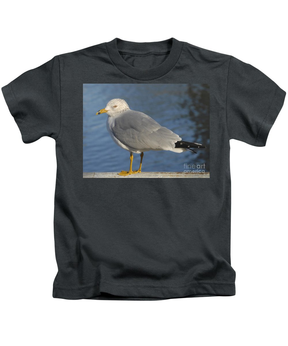 Seagull Kids T-Shirt featuring the photograph Seagull by David Lee Thompson