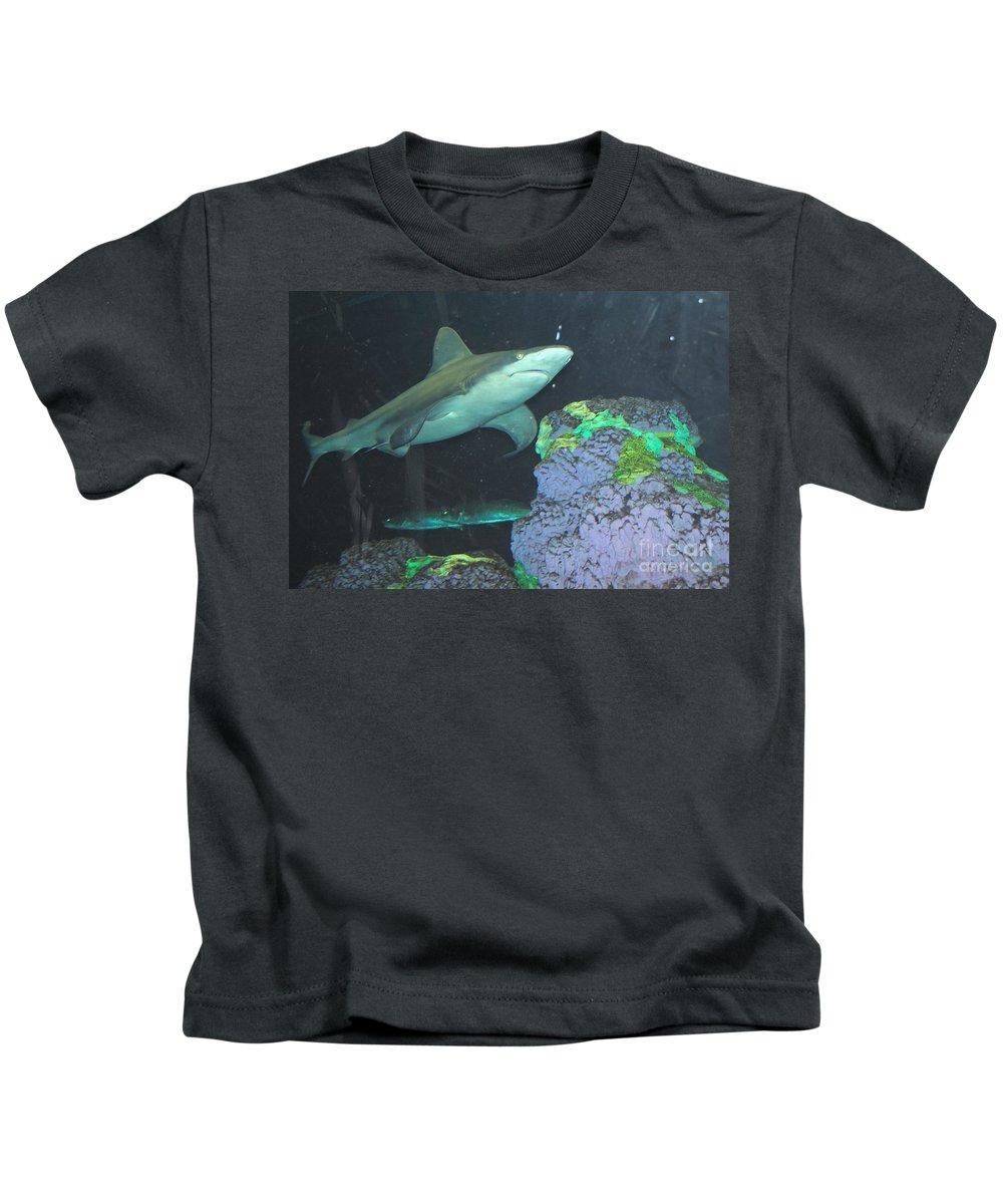 Shark Kids T-Shirt featuring the photograph Shark by Jost Houk