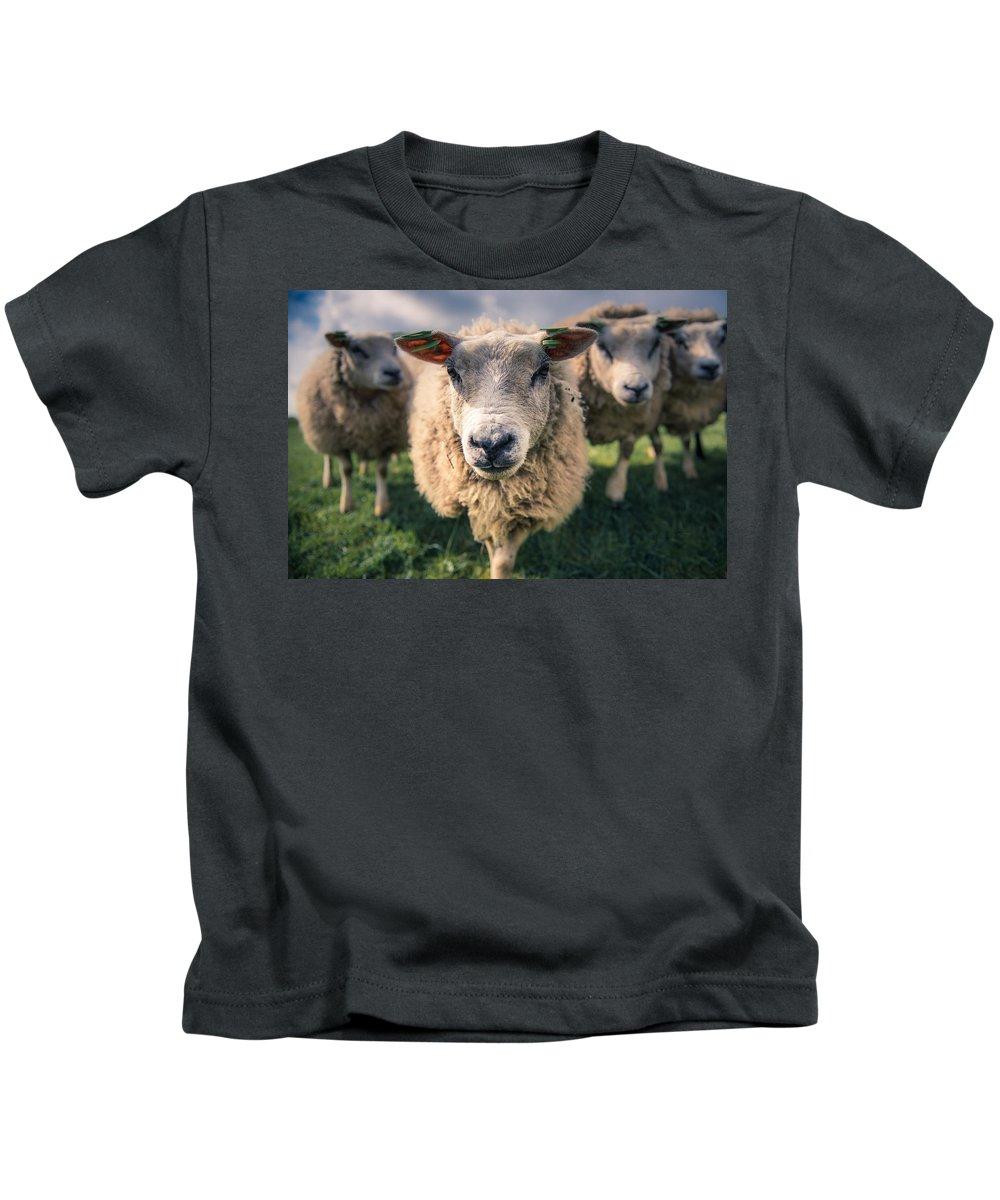 Sheep Kids T-Shirt featuring the digital art Sheep by Dorothy Binder