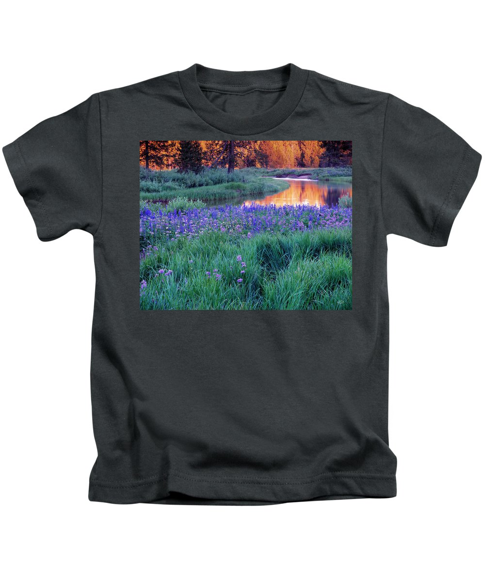 Silvery Lupine Kids T-Shirt featuring the photograph Silvery Lupine by Leland D Howard