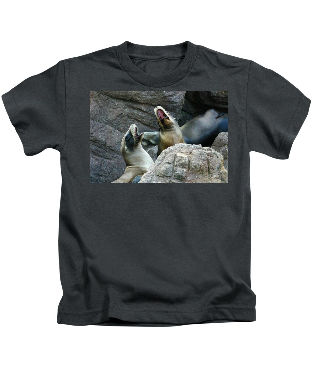 Sea Lions Kids T-Shirt featuring the photograph Singing Sea Lions by Anthony Jones
