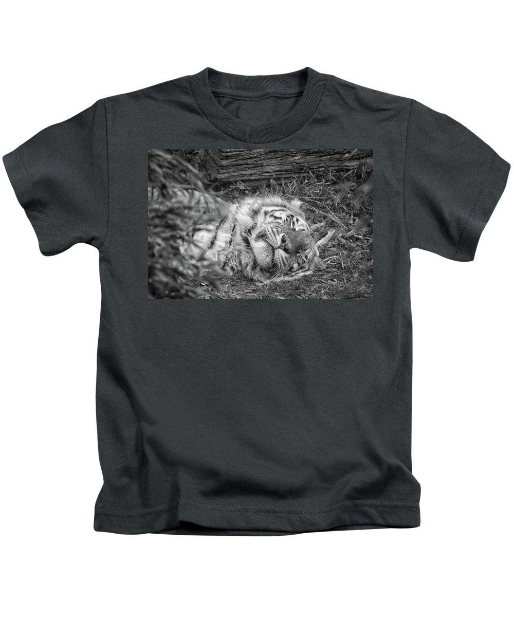 Wild Kids T-Shirt featuring the photograph Sleeping Tiger by Martin Newman